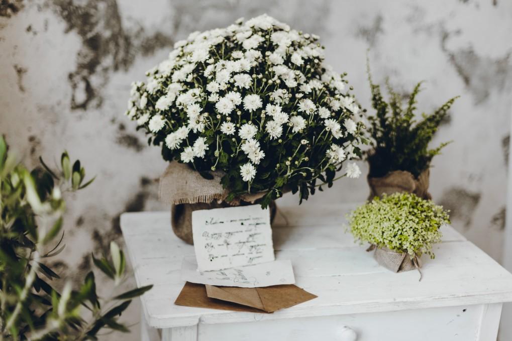 λευκά λουλούδια σε τραπέζι